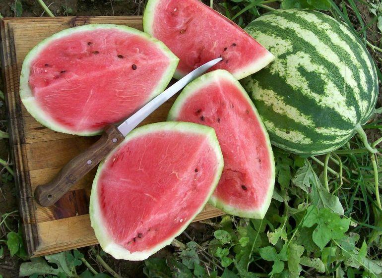 Crimson Sweet - Types of Melon