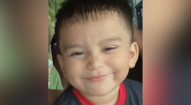 Toddler Found Alive After Surviving 3 Days Alone In Woods