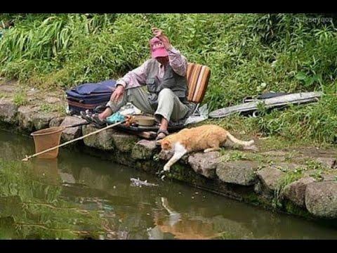 Приколы на рыбалке » DreemPics.com - картинки и рисунки на ...