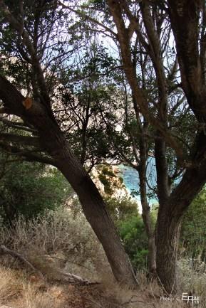 view to Agia Eleni