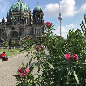 Einmal Berlin zum mitnehmen bitte Rotkaeppchen Fruchtsecco Sommertour-142