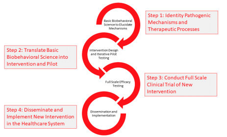 C-MIIND Research Process