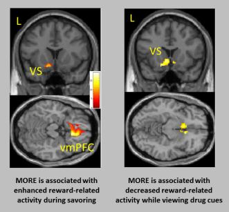 MORE-fMRI-SB