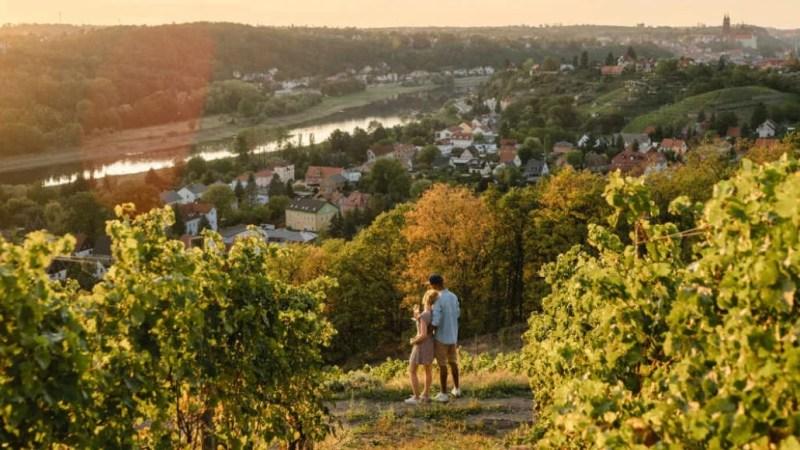 Weinwandern Dresden Elbland