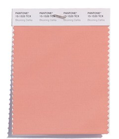 Pantone-Fashion-Color-Trend-Report-New-York-Spring-2018-Swatch-Blooming-Dahlia - Copy