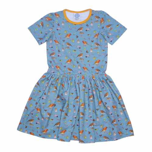 Blue Robin Dress