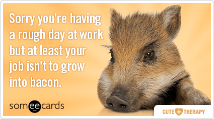 pigs-bacon-rough-day-work-cute-therapy-ecards-someecards