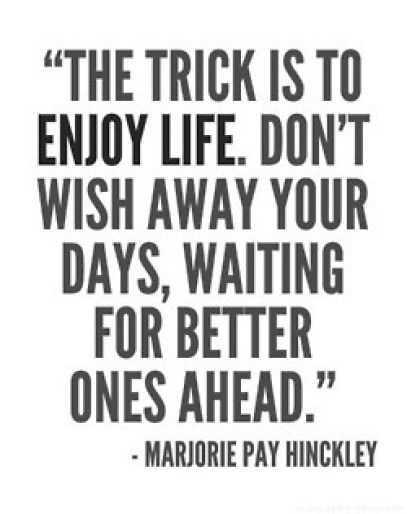 the trick is to enjoy life
