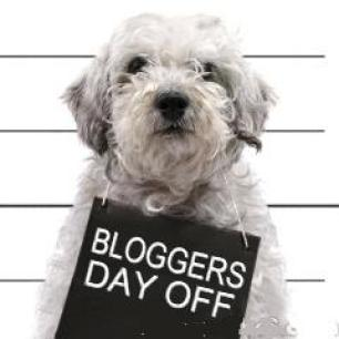 bloggers-day-off