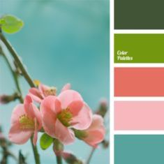0e5259c2c76406feb884ccfc1257dd29--pastel-color-palettes-pastel-colors