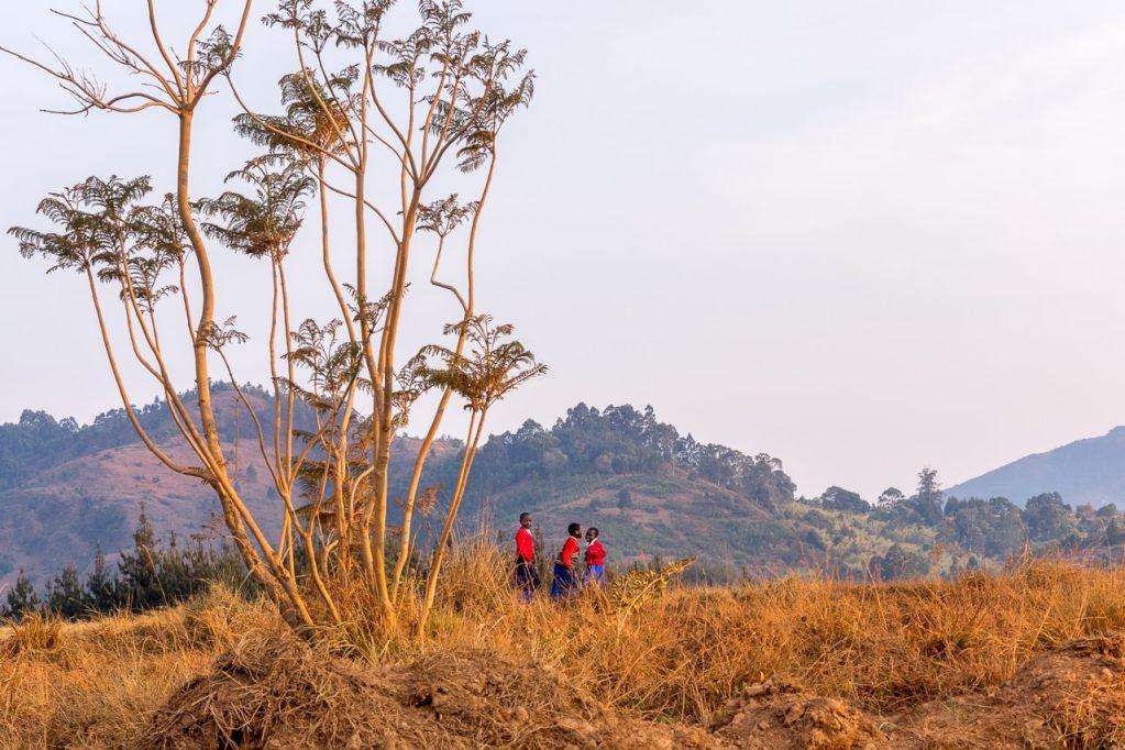 School partnership with a Tanzanian Secondary School