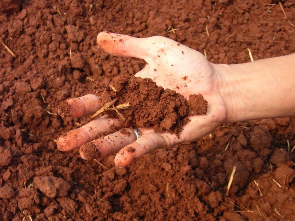 ดินด้วยดินเหนียว