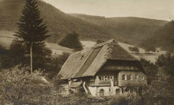 загадочные крыши
