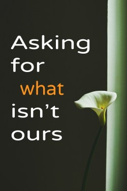 """""""Asking for what isn't ours"""" a homily for Proper 6B by Drew Downs"""