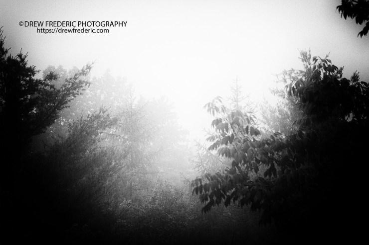 Foggy_Morning_Moms_BW_IMG_9632