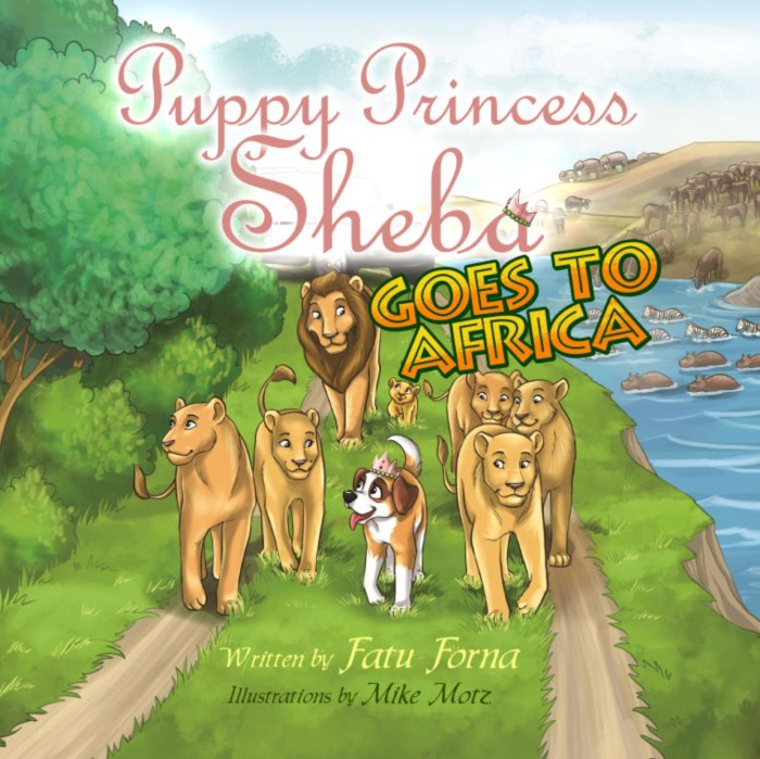 Sheba Africa low res cover