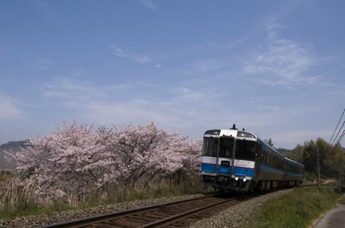 向井原~高野川 919D