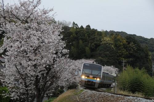 朝倉駅~枝川駅 南風11号 中村行き