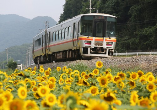2014盛夏お見舞い申し上げます/2014.07.29/Posted by 893-2