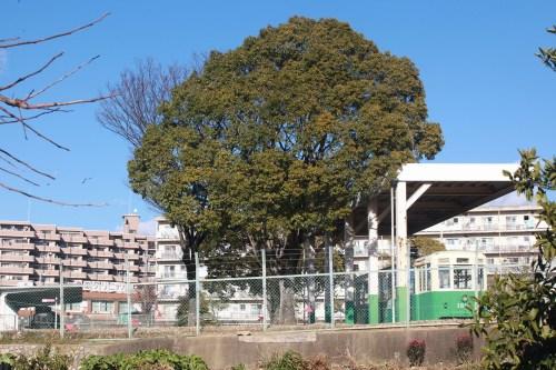 s-12.12.26豊田市交通公園名古屋1814