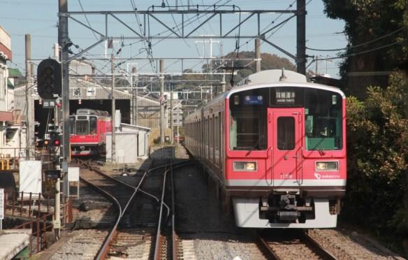 12.11.21入生田1159