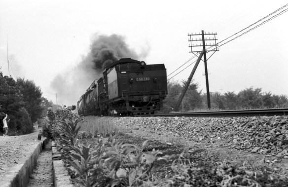 奈良線001