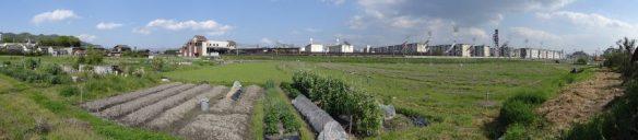 島本駅前。左に駅本屋、中央部までホームが伸びる