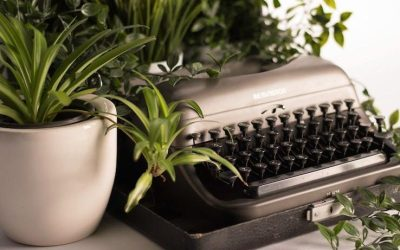 Health Coach Tip – Indoor Plants for Better Health