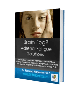 Brain Fog Ebook