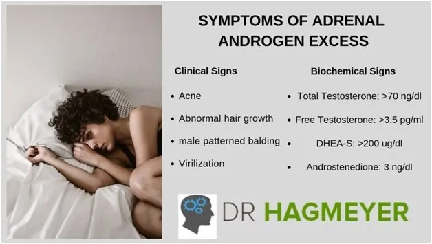What is Adrenal Androgens Excess? 1