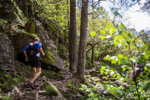 A photo of a runner at the Ultra-trail Snowdonia ultramarathon