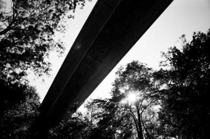The Bridge, 2008