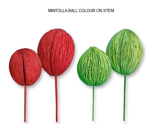 Mintolla Balls Color