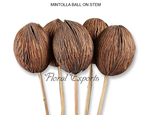 Mintola Balls Natural