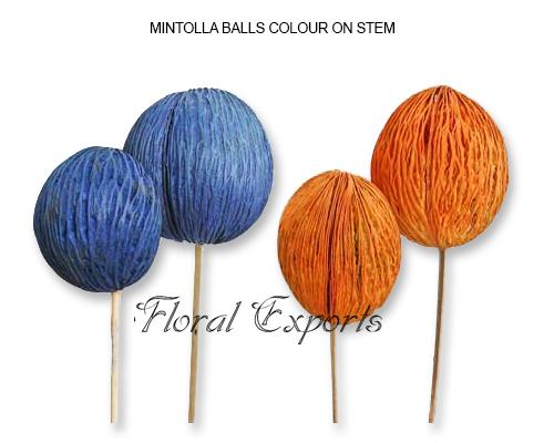 Mintolla Balls Colour