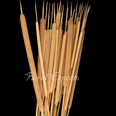 Reed Spadix Natural - Bulk Dried Flowers Supplies