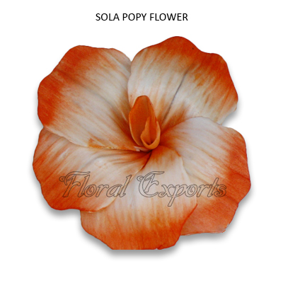 Sola Popy Flowers-Balsa Wood Flowers Bulk