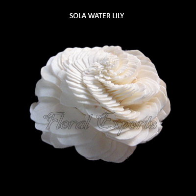 Sola Water Lily 10cm-Sola Eco Flowers