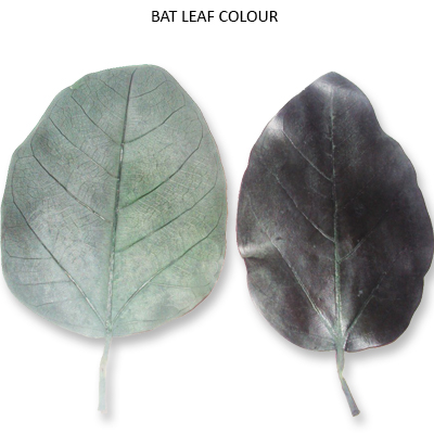 Bat Leaves Preserve Green Colour