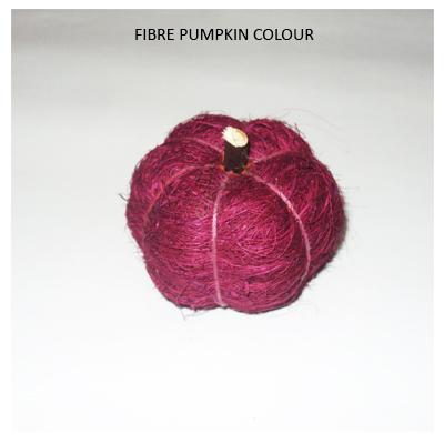 Fibre Pumpkin Colour - Wholesale Decoratve Flowers