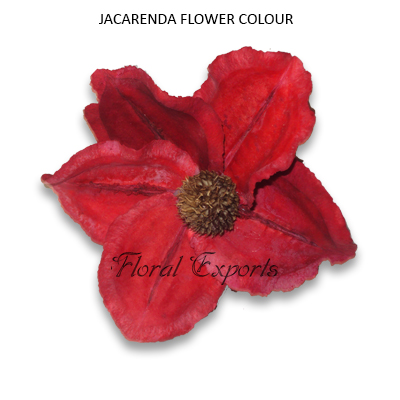 Jacaranda Flowers Red Loose