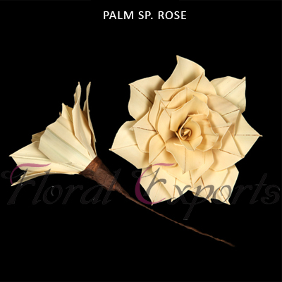 Palm Rose Special on Stem - Palm Rose Wholesale Supplies