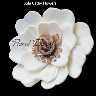 Shola Flowers Bulk Manufacturer Wholesale Supplier