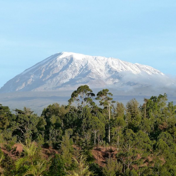 Drifters Guide Kilimanjaro Hiking Experience