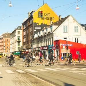 Drifters Guide Copenhagen Norrebro Experience Tour