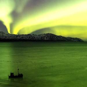 Icelandic Northern Lights Cruise
