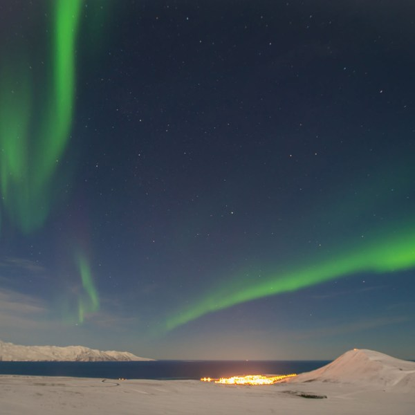 Icelandic Northern Lights Cruise