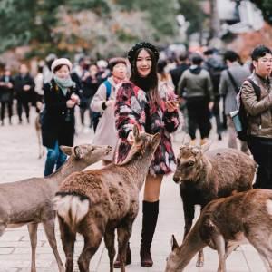 Nara Japan Walking Tour