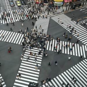Tokyo Private Cultural Tour