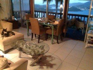 St Thomas driftwood coffee table